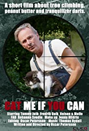 Cat me if you can Poster