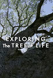 Exploring 'The Tree of Life' Poster