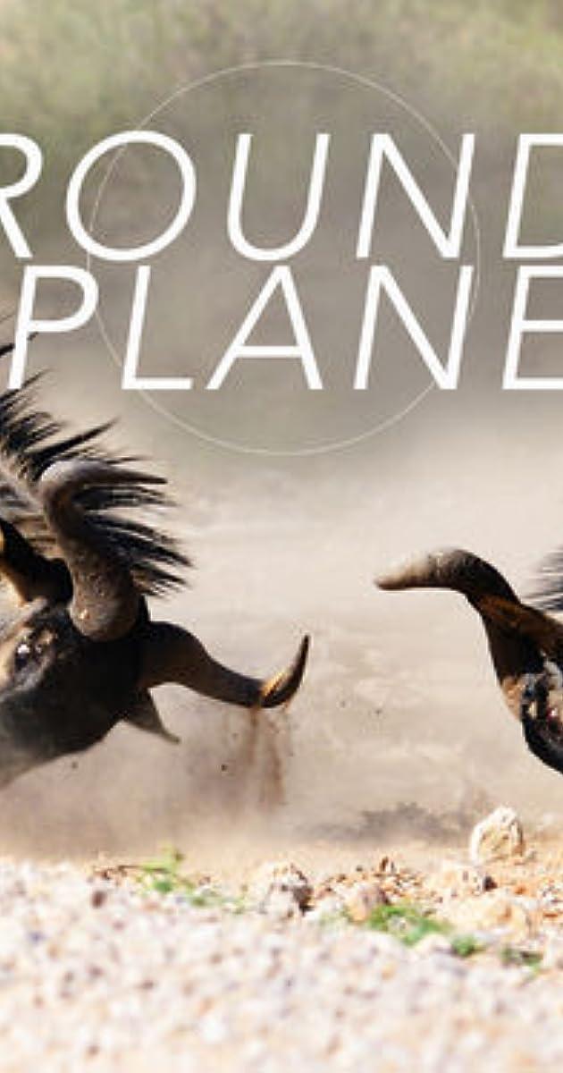 Round Planet Tv Series 2016 Imdb The genre of parody documentaries is vastly underserved. round planet tv series 2016 imdb
