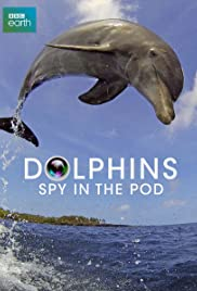 Dolphins: Spy in the Pod Poster
