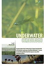 Underwater Okavango