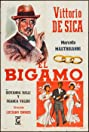 The Bigamist (1956) Poster