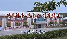 Dangjeongchaeg-eul myeongjullo ganjighago - Wonsangudugongjang (2017 TV Special)