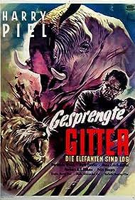 Gesprengte Gitter (1953)