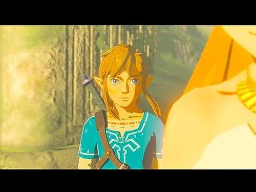 The Legend Of Zelda: Breath Of The Wild (VG)