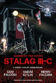 Primary photo for Stalag III-C