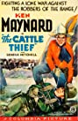 The Cattle Thief (1936) Poster