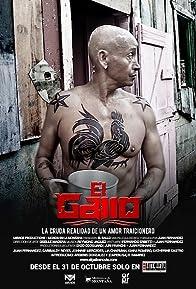 Primary photo for El Gallo
