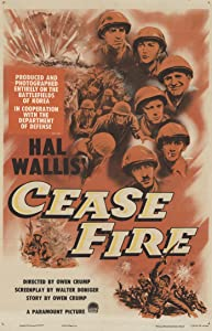 Cease Fire! USA