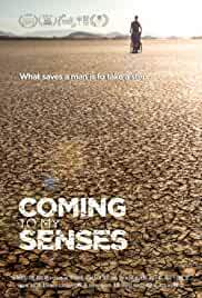 Watch Movie Coming To My Senses (2017)