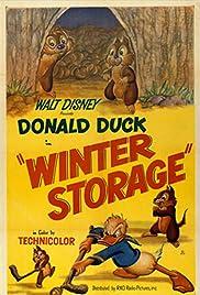 Winter Storage Poster