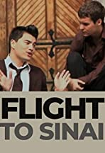 Flight to Sinai