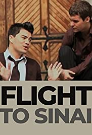 Flight to Sinai Poster