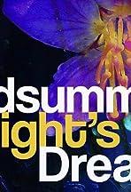 Asolo Rep BardWired: A Midsummer Night's Dream