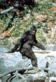 Image result for image bigfoot patterson film