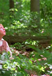 The Restoration (2004) starring Dustin Harding on DVD on DVD
