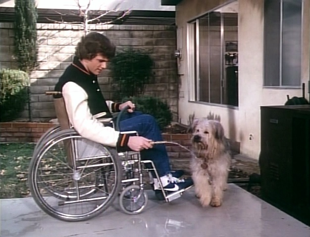 Patrick Cassidy and Johnny the Dog in Here's Boomer (1980)