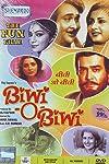Biwi-O-Biwi (1981)