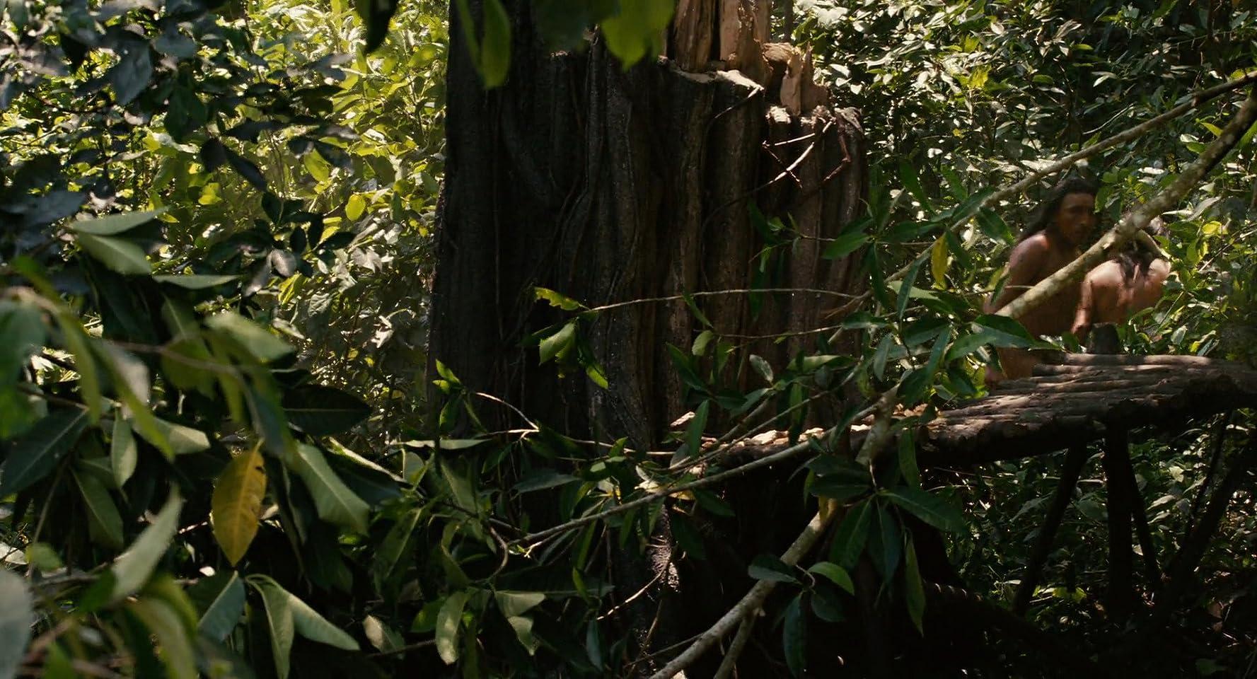 Apocalypto-Yucatan-jungle-jungle-Mayan