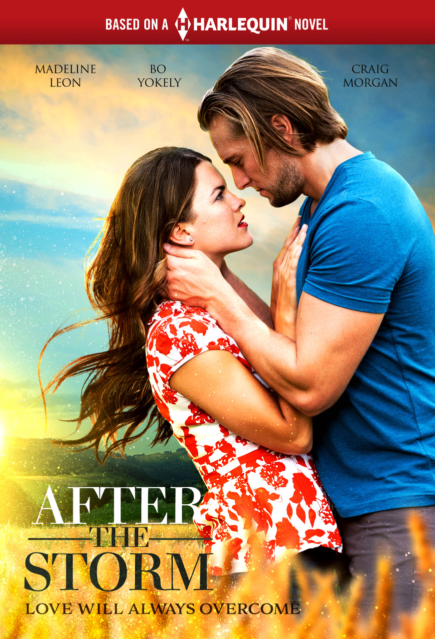 After the Storm (TV Movie 2019) - IMDb