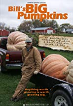 Bill's Big Pumpkins
