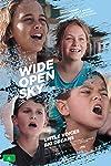 Wide Open Sky (2015)