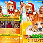 Kelly Kruger and Kevin McGarry in A Very Corgi Christmas (2019)