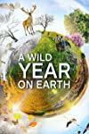 A Wild Year on Earth Exclusive Clips: Frogs and Whales Hog the Spotlight!