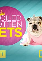 Spoiled Rotten Pets with Beth Stern
