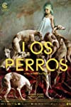 'Los Perros,' 'To Let' Win Kolkata Festival