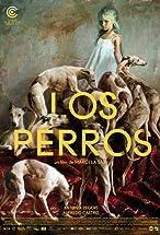 Primary image for Los Perros