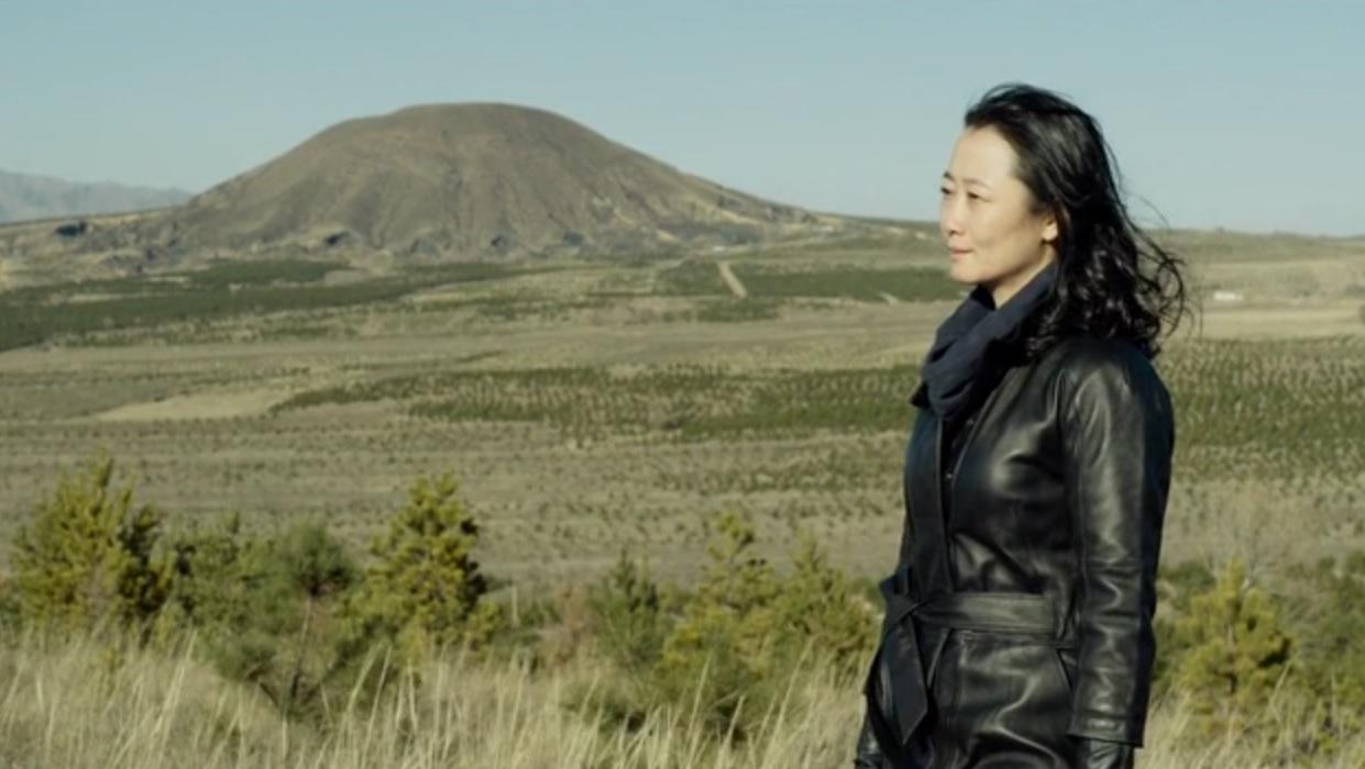 Tao Zhao in Jiang hu er nü (2018)