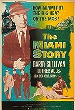 The Miami Story