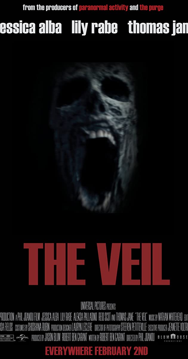 Subtitle of The Veil