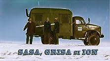 Sasa, Grisa si Ion (2006)