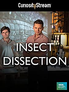 Best movie to watch in full hd Insect Dissection: How Insects Work by none [[movie]