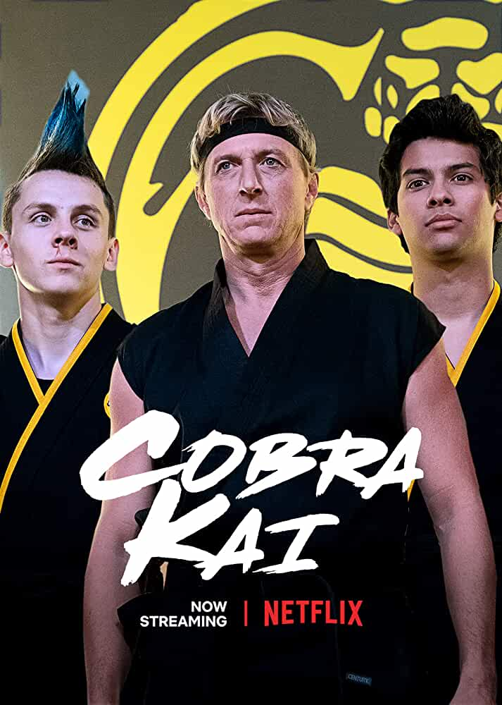 Cobra Kai S01 Complete (Hindi Dubbed)