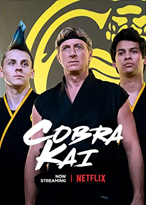Cobra Kai : [English] Season 1-3 NF WEB-DL 480p & 720p | [Complete]