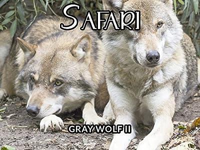 Comedy movies speed buggy secret safari [avi] | full movie free.