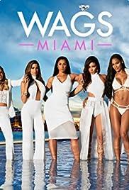Wags Miami Tv Series 20162017 Imdb