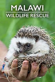 Malawi Wildlife Rescue (2019)