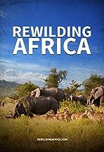 Rewilding Africa