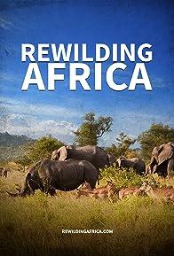 Primary photo for Rewilding Africa