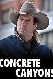 Concrete Canyons (2010) 1080p