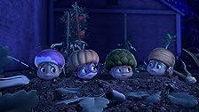 Jeanette's Secret Garden/Treasure Hunt
