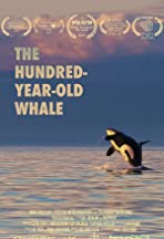 The Hundred Year Old Whale