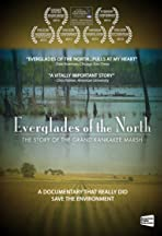 Everglades of the North