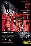 Film review: 'Budapest Noir'