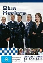 Blue Heelers