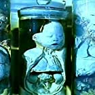 Hei tai yang 731 xu ji zhi sha ren gong chang (1992)